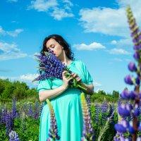 Люпиновое поле :: Анастасия Жигалёва