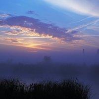 Утреннее солнце :: Юрий Гайворонский