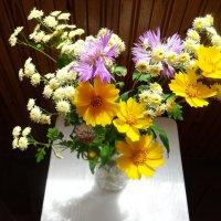 Летний букет полевых цветов :: татьяна