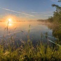 Утро :: Анатолий