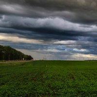 После дождя, апакалептическое небо Нависло над Шумилино так низко... :: Анатолий Клепешнёв