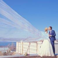 Свадебная фотосессия :: марина алексеева