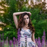 Маргарита и люпины! :: Наташа Шамаева