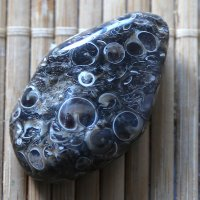 Черепаховый агат :: Alexander Varykhanov