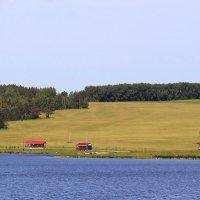 Приглашение на рыбалку :: Татьяна Ломтева