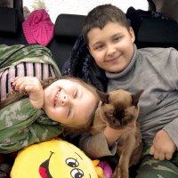 А мы с котом любим путешествовать, а кот, наверное, не очень :: Юлия Ланина