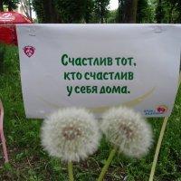 Счастье - сейчасье... :: Алекс Аро Аро