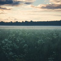 Рассвет в поле :: Алёнка Шапран