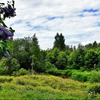 Вид на долину речки Лубья :: Елена Павлова (Смолова)