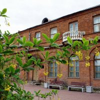 Вход в господский дом усадьбы Приютино :: Елена Павлова (Смолова)