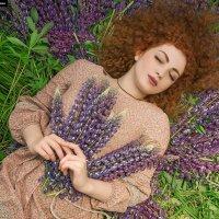 Summer bliss. :: Сергей Гутерман