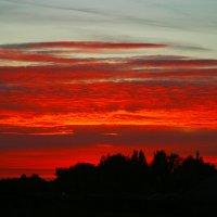 Огненный закат :: Любовь Потравных