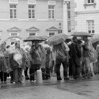 Мокрый митинг :: Виктор (victor-afinsky)