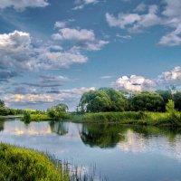 Однажды теплым летним днём :: Лара Симонова