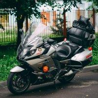 Moto :: Alexander Royvels