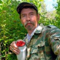 От куста и до куста  малина дикая  густа!:) :: Андрей Заломленков