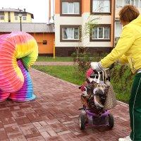 ...там, на неведаных дорожках...))) :: MoskalenkoYP .