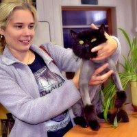 Девушка и кот. :: Михаил Столяров