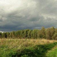 Поле,лес и тучки :: Владимир Гилясев