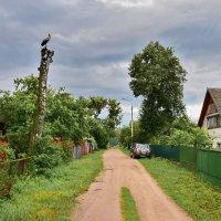 Вечер  в  деревне  Красное. :: Валера39 Василевский.