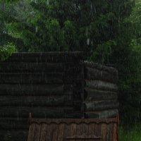Дождь :: sergej-smv