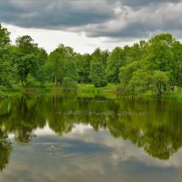 Ламской пруд... :: Sergey Gordoff