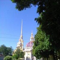 Петропавловская крепость этим летом (2017 год, С-Петербург) :: Светлана Калмыкова