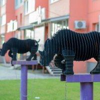 Железные носороги :: Сергей Черепанов