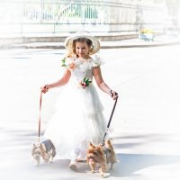 Барышня с собачками. :: Александр Лейкум