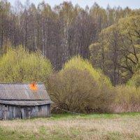 Домик в деревне :: Константин Поляков