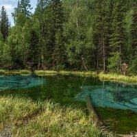 Голубое (Гейзерное) озеро :: Андрей Поляков