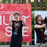 Аплодисменты :: Светлана Беляева
