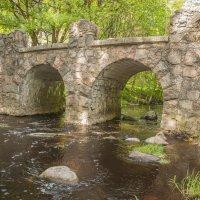 Ораниенбаум. Руинный мост. :: bajguz igor