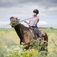 Коняшка-очаровашка! :: Андрей Минин