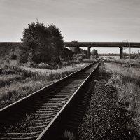 Geometry of crossing. :: Андрий Майковский