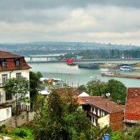 Мосты через Саву в Белграде :: Денис Кораблёв