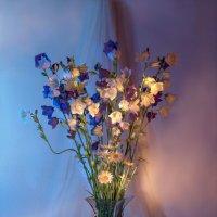 вечерние цветики... :: Svetlana AS