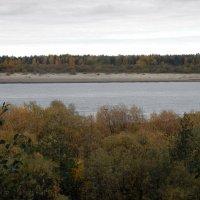 Река Вычегда осенью. :: Светлана Громова