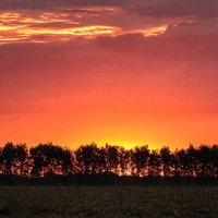 Пробуждение Нового дня ... :: Va-Dim ...