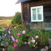 Senas langas / Old window :: silvestras gaiziunas