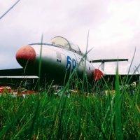 Aero L-29 Dolphin :: Daria Zhdanova