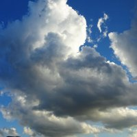 Облака :: татьяна