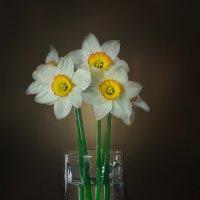 Цветы :: Евгений Камынин