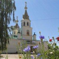 Церковь Петра и Павла :: наталия