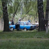 Пикник :: Виктор Филиппов