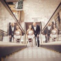 3d свадьба :: елена брюханова