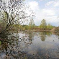 Минское море весна :: Флоуффлурр Рроуфф-Ниирсс