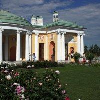 В Висячем саду :: Ирина Румянцева