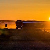 В свете солнечного заката. :: Юрий Харченко