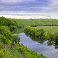 Река Красивая меча Ишутинское городище :: Мадина Скоморохова